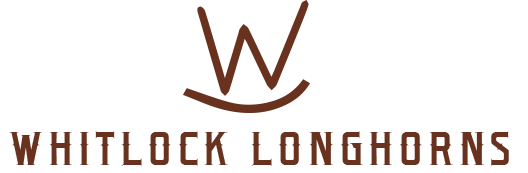 Whitlock Longhorns Logo
